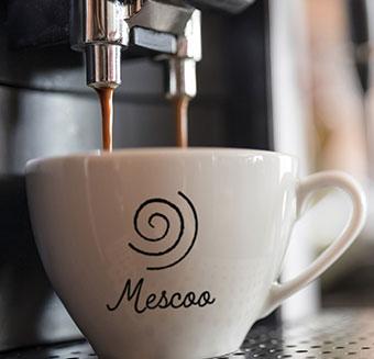 Mescoo-340×327
