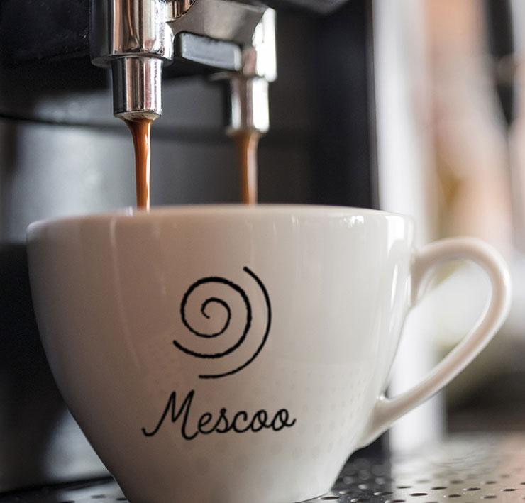 Mescoo-740×709